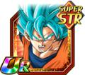 [Fighting for Victory] SS God SS Goku